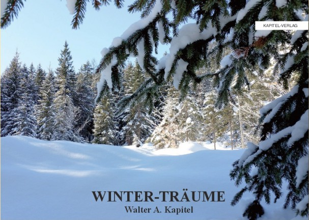 WINTER-TRÄUME - Wintertrume